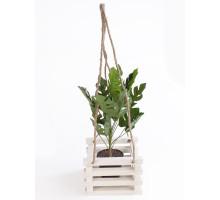 Кашпо для цветов из дерева БонПос белое